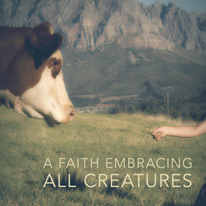 So <em>was</em> Jesus a Vegetarian? <em>A Faith Embracing All Creatures</em> addresses Christian Vegans' Most Frequently Asked Questions