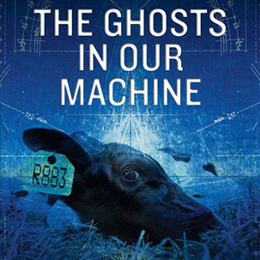 Filmmaker Liz Marshall Shines a Light on The Ghosts In Our Machine