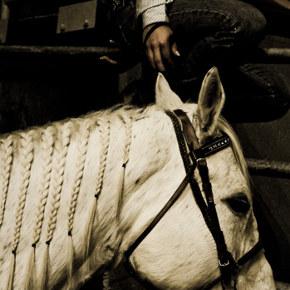 Inside Rodeo Culture with KarolOrzechowski