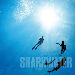 Sharkwater: An Interview With Rob Stewart
