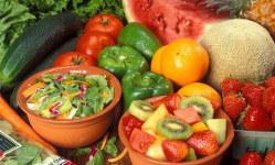 archive_veg_diets