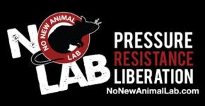 Pressure, Resistance, Liberation: No New Animal Lab Discusses their Fight in EndingVivisection.