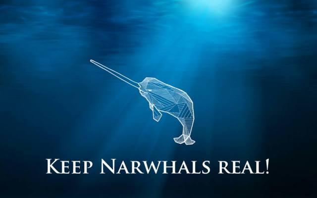 keep narwhals real