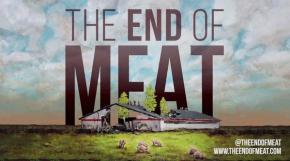 Towards a world without domination and the end of meat